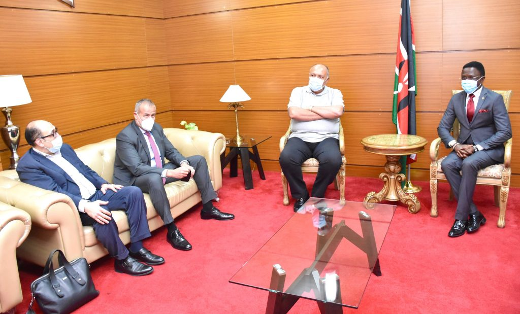 Egypt foreign minister in Kenya to seek support in GERD negotiations